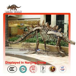 pantalla de fósiles de dinosaurios del paisaje