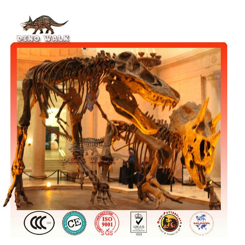 educativos dinosaurio réplicas fósiles