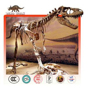 de fibra de vidrio allosaurus réplica de fósiles