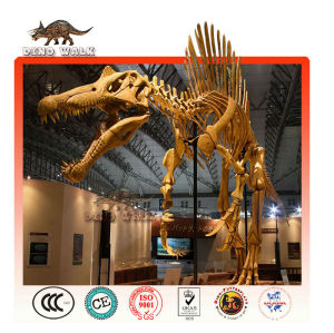 tamaño de la vida de esqueleto de dinosaurio modelo