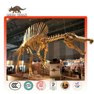 Spinosaurus Fossil Replica