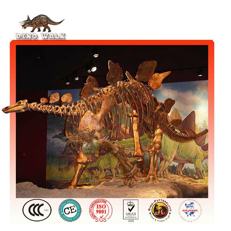 stegosaurus skelett replik