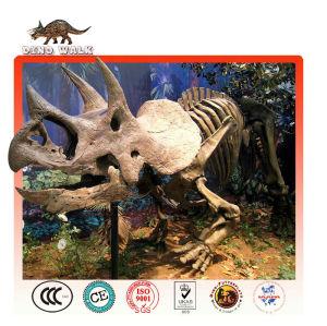 triceratops réplica de fósiles