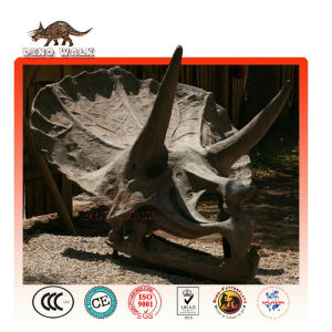 Artificial Triceratops Head Fossil