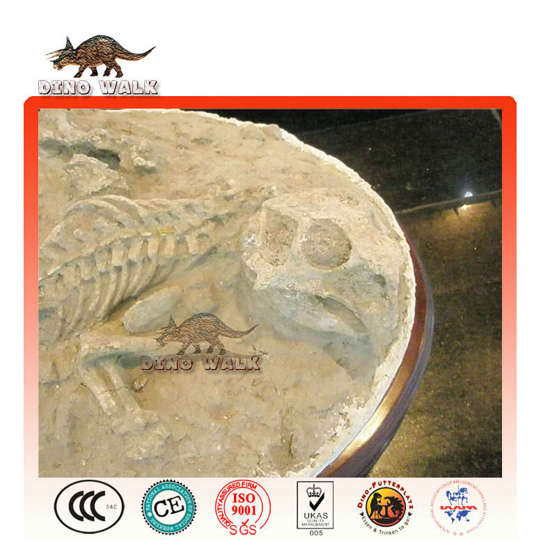 fossiler replik psittacosaurus