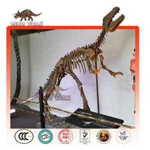 Fiberglass Dino Fossil Model