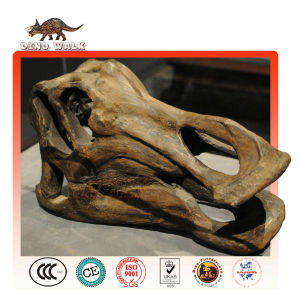 dinosaurio de cabeza de esqueleto
