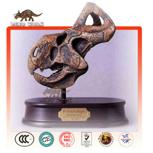 Dino Fossil Gift