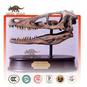 Dino Skeleton Gift