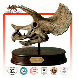 mini triceratops de cabeza de esqueleto de regalo