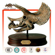Mini Triceratops Head Skeleton Gift