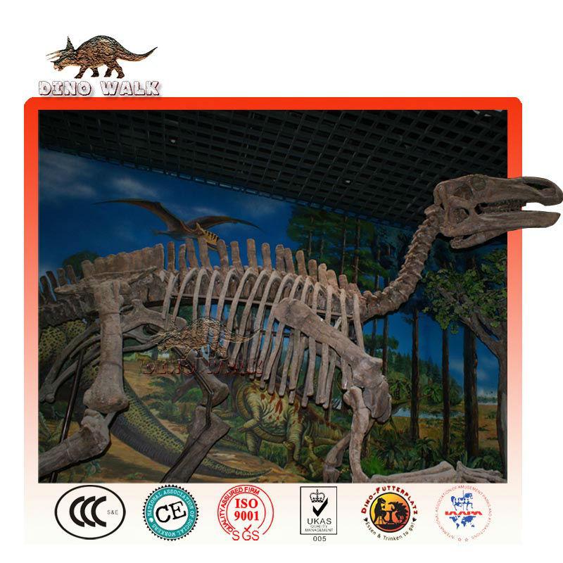 di qualità museo replica fossile di dinosauro