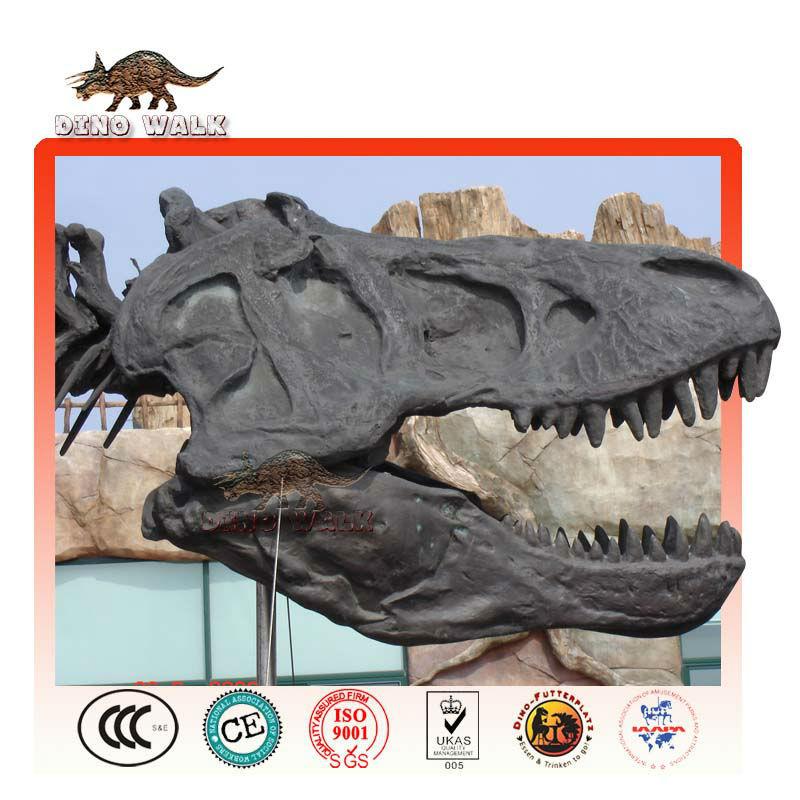 Biggest Tyrannosaurus Head Skeleton