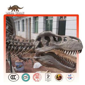 fósiles yongchuanosaurus réplica