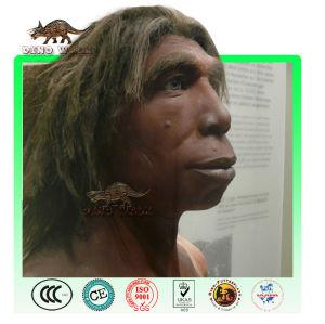 maßgeschneiderte sinanthropus wachs figur