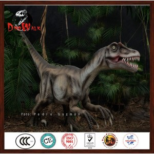 Factory wholesale dinosaur costume lightweight with good price