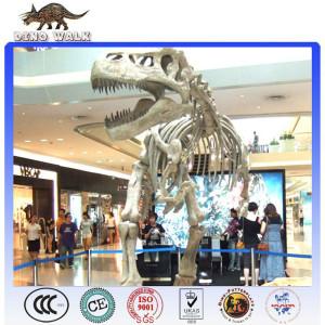 Life Size dinosaur fossil
