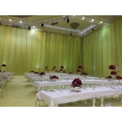 Decorative Organza curtain fabric