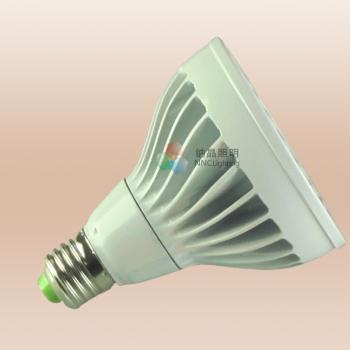 SLQ-PHL PAR30 LAMP