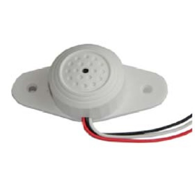 Audio  Amplifier803