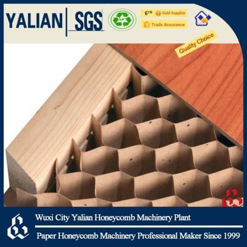 Paper honeycomb core for door stuffing