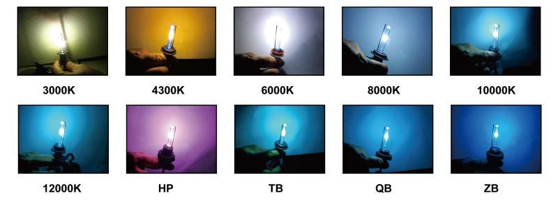 wholesale D1 headlight bulb