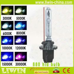 xenon bulb