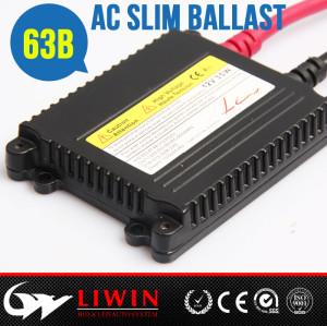 LW 厂家直供汽车安定器 氙气灯安定器 hid安定器35W 12V 质保16个月