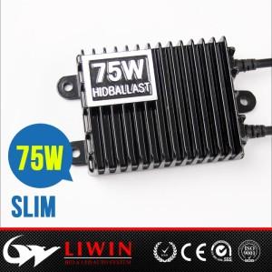 LW 厂家直销12V/24V 100W/75W卡货车疝气灯氙气灯套装100W灯泡安定器
