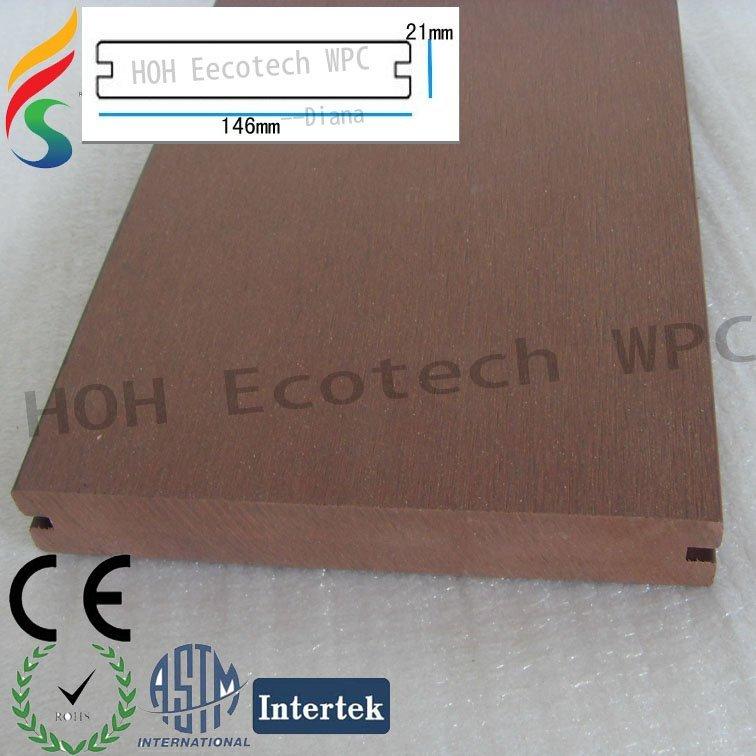 SDC16592 .jpg