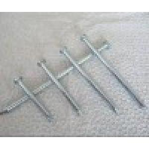 Galvanized concrete Nails/Nails