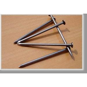 Spiral Galvanized Steel Nails (manufacturer)