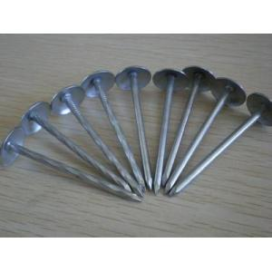 Decorative roofing nails with umbrella head smooth or twisted