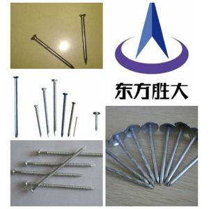 hot dipped galv.umbrella head roofing nails