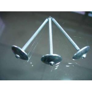 Electric Galvanized steel Nails