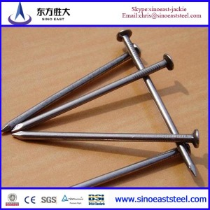 common steel nail