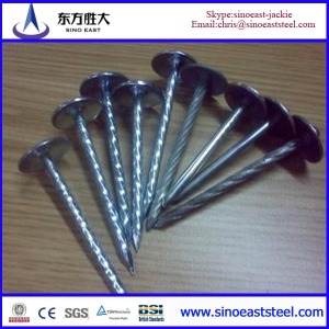 umbrella head roofing nail
