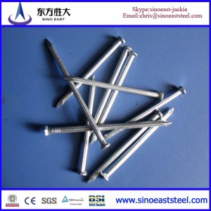 Q195 galvanized steel  Nails