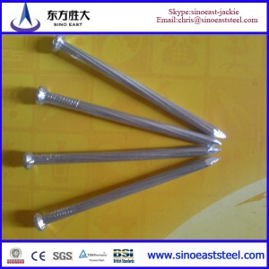 galvanised steel nail