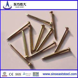 Clavos de aceros galvanizados inoxidables