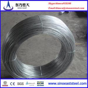 galvanizado alambre de resorte de acero Q235, 70 #, 20 #, ETC