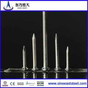 polished common nails chinese factory
