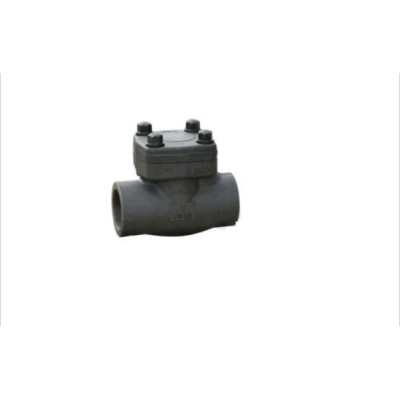 Forged Swing Check Valve