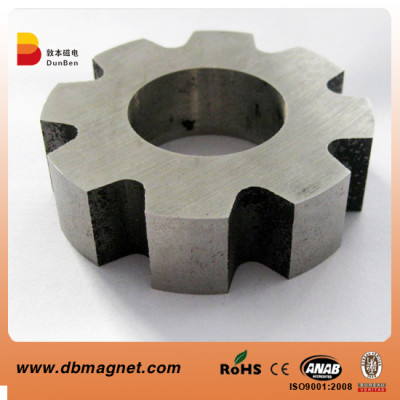 Alnico Multi Pole (Rotor) Magnets