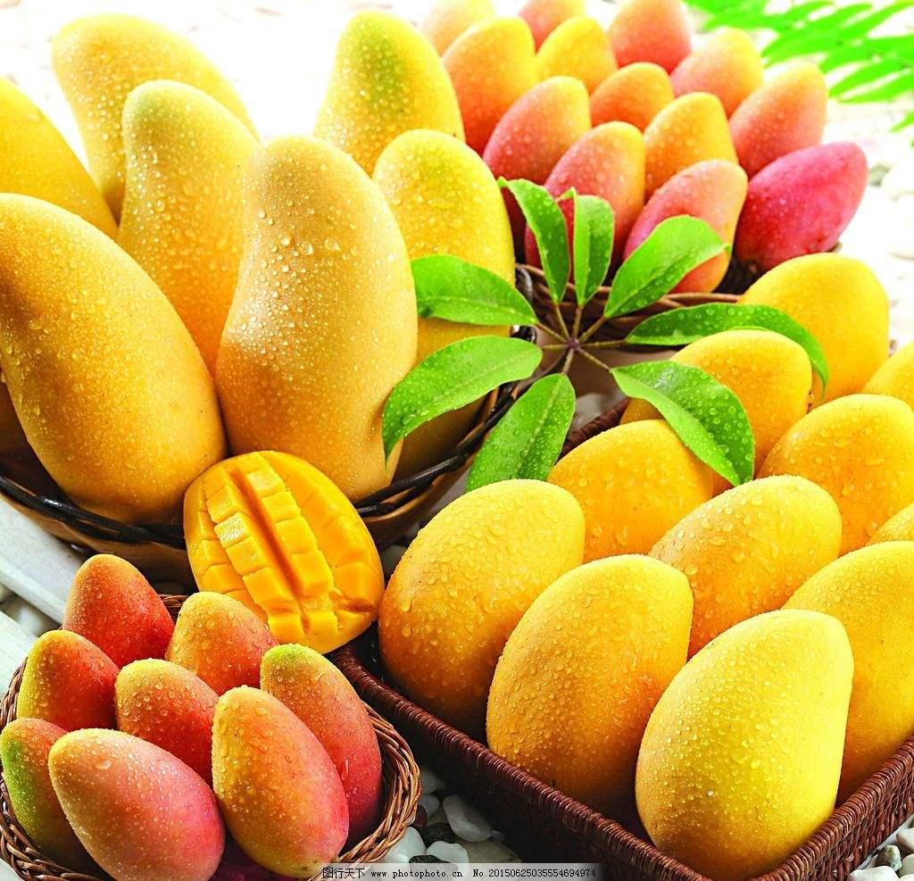 mango ripener