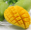 Using of mango ripener