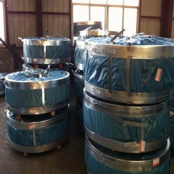 galvanized steel strip/coil