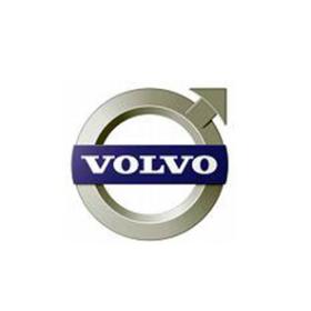 Volvo Rubber Bush