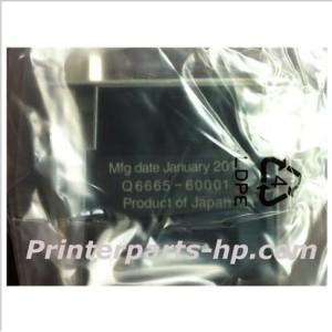 Q6665-69001 HP Designjet 9000 Printer Head
