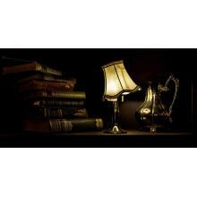 1 min choose LED table lamp